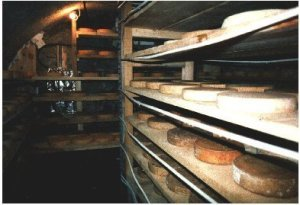 cave a fromages