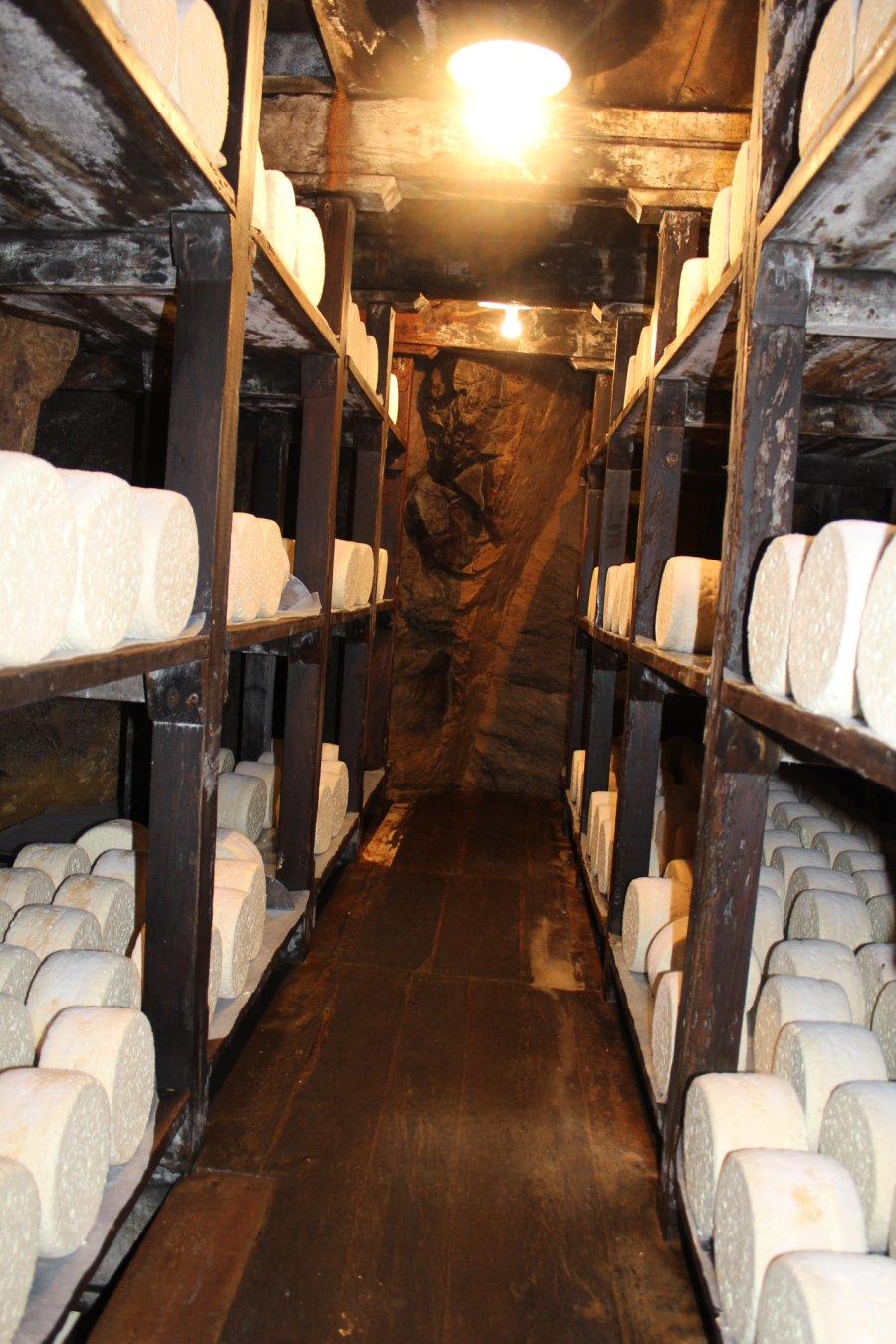 roquefort-combes-luisier-affineur-affinage-caves