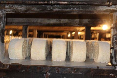 roquefort_luisier_aop_cave_fromage
